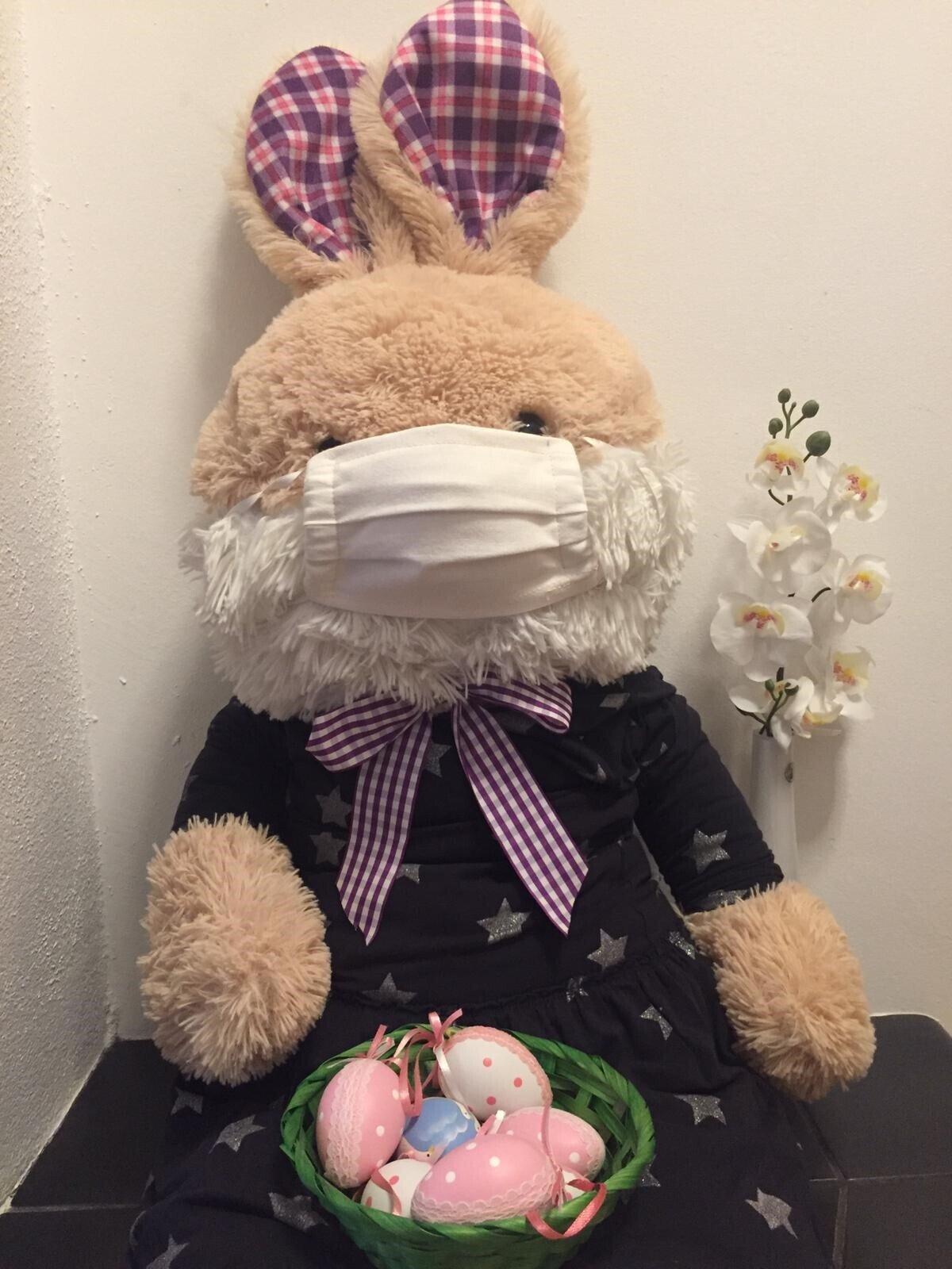 Bild zeigt Hase mit Mundschutz