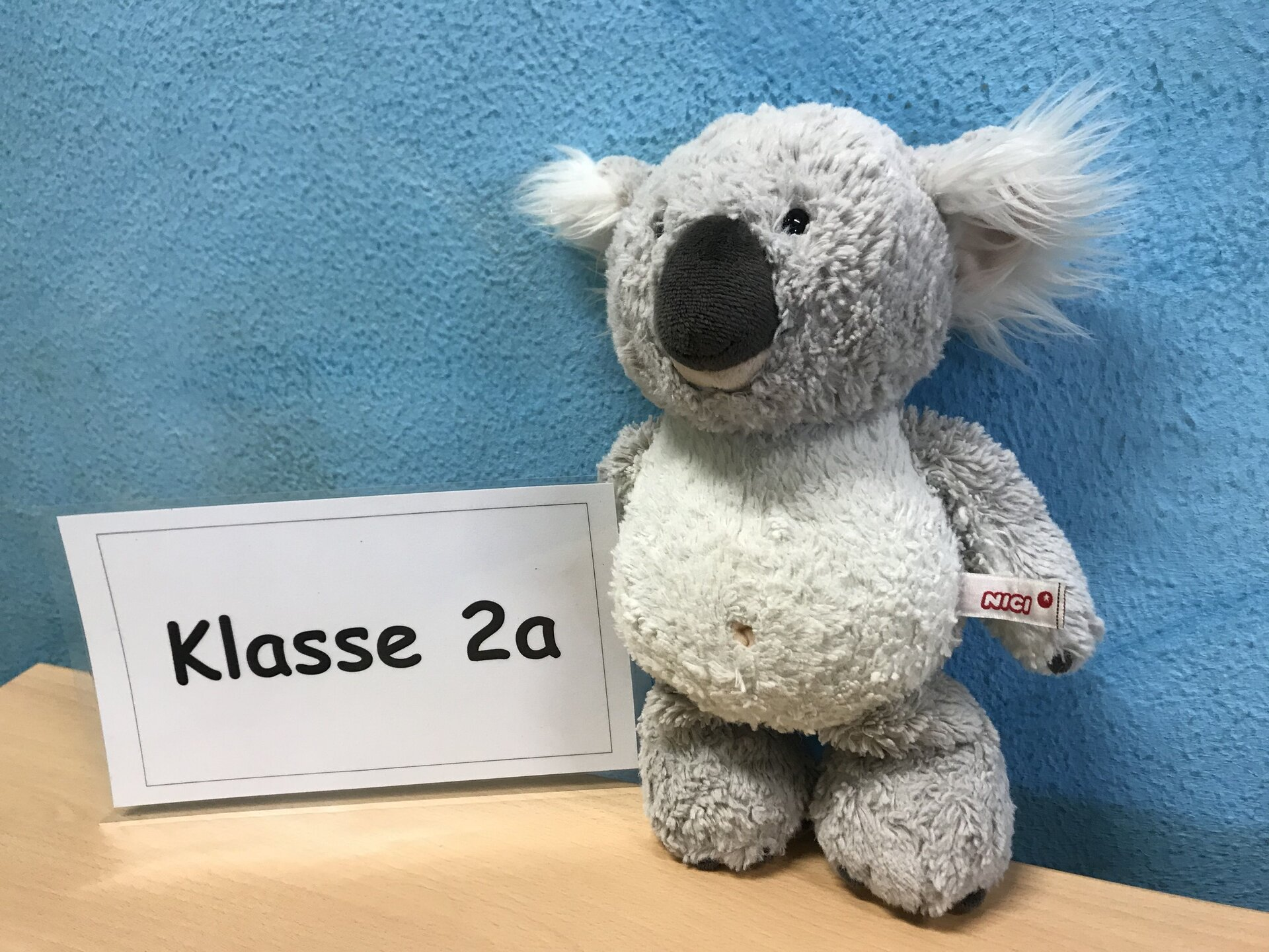 Klasse 2a Koala