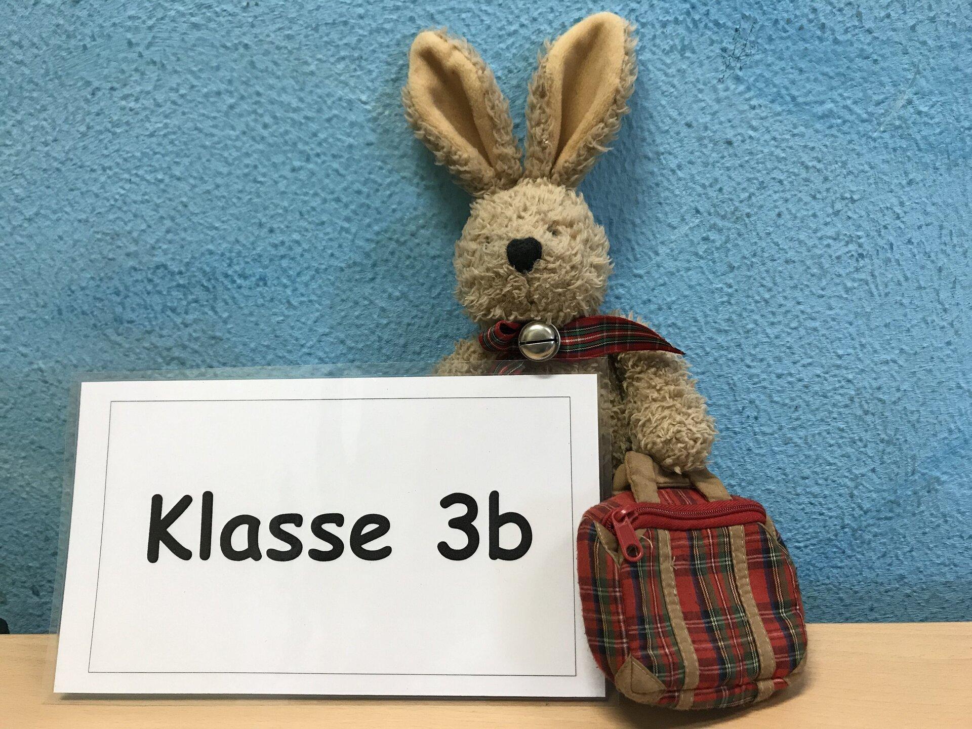 Hase 3b