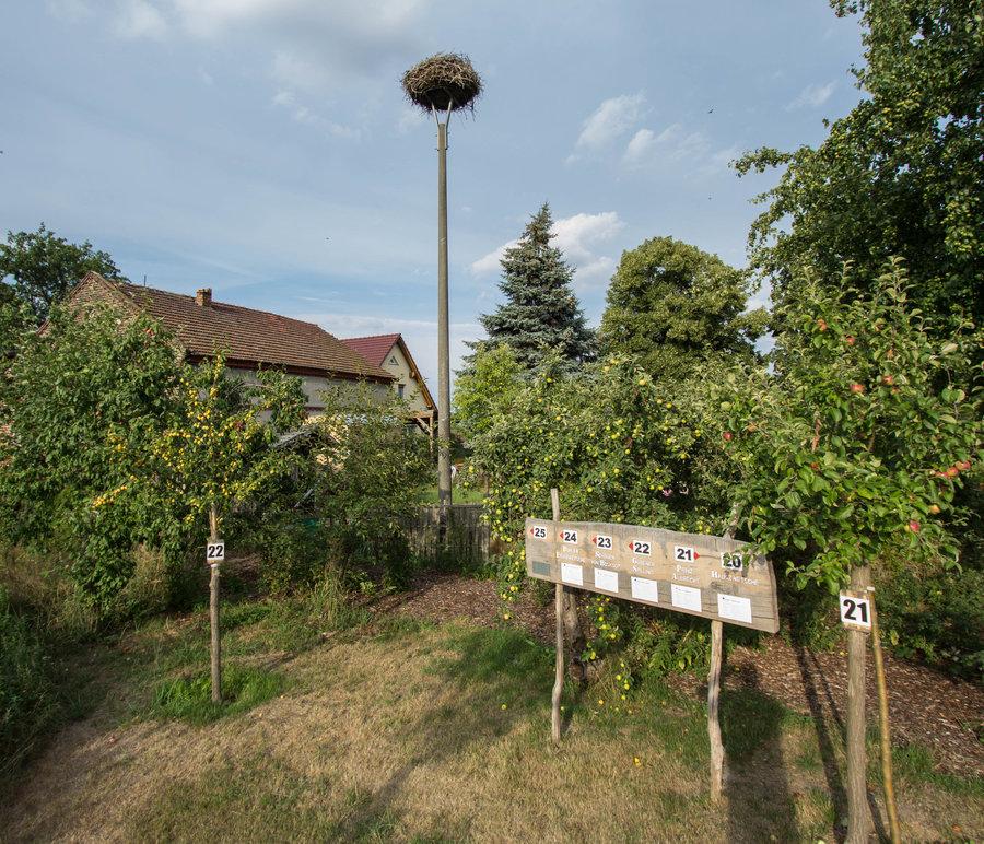 Bienenweide_mit_Storch_Jurisch_1_von_1_-2