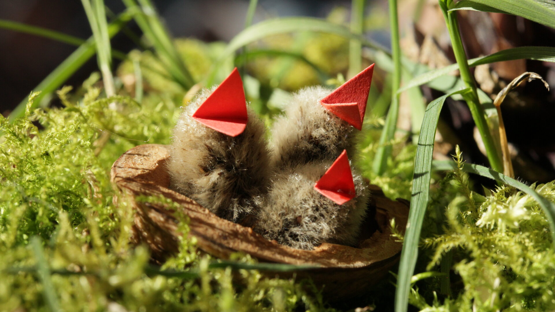 Vögelchen basteln