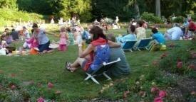 Musical picnic