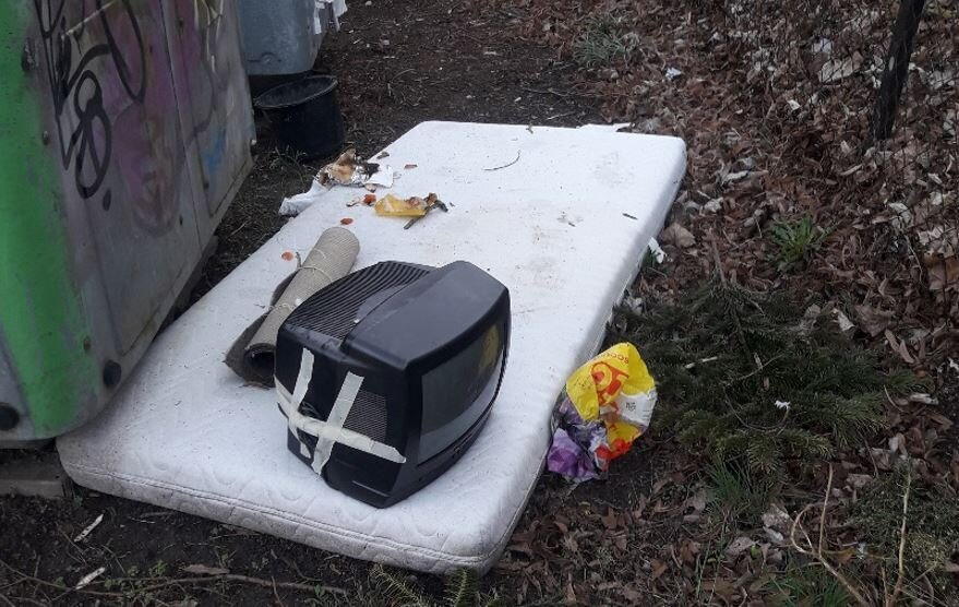 abgeladener Müll