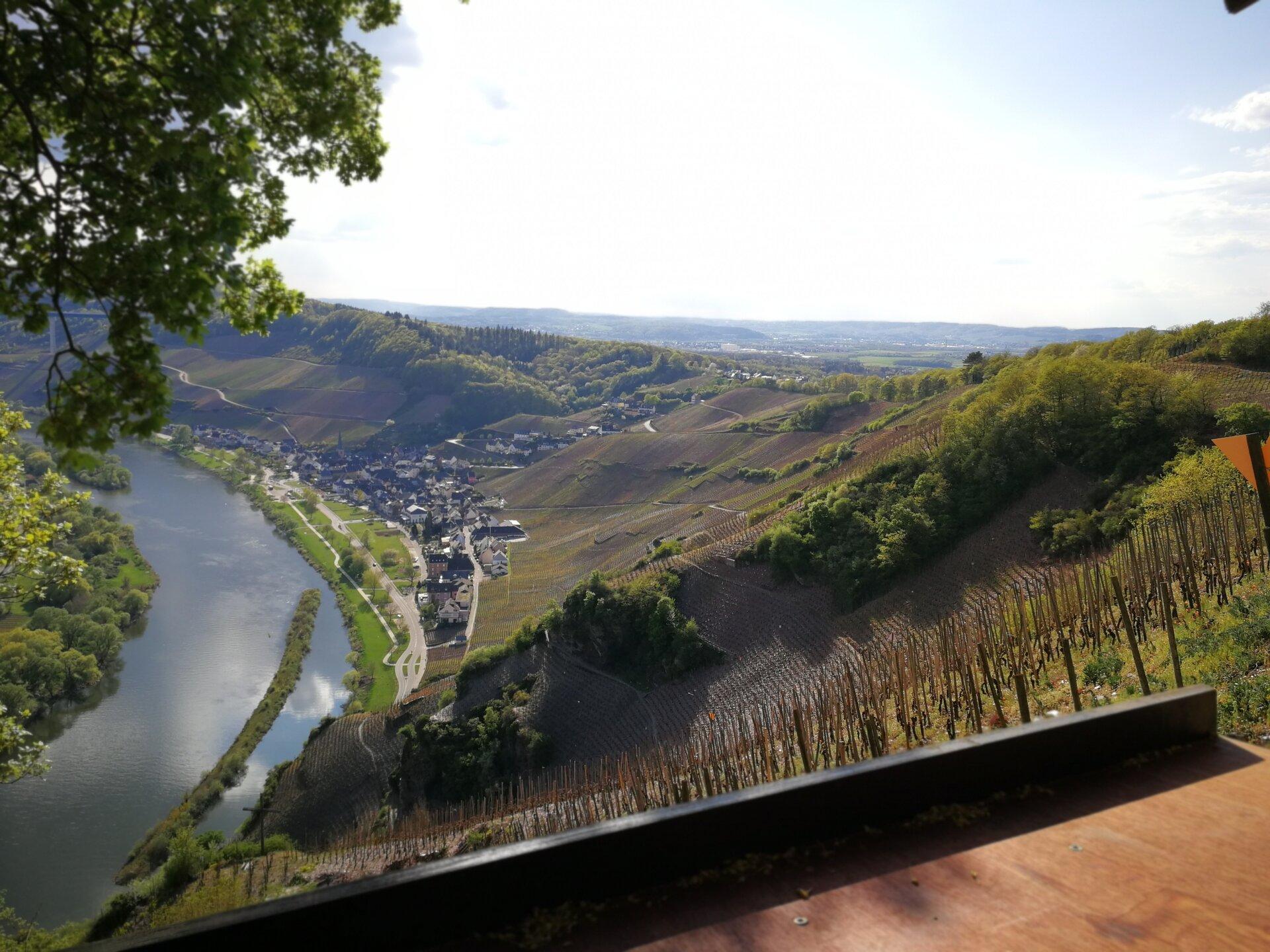 WeinWanderung in den steilen Weinbergen um Ürzig. Reservieren Sie Ihre Wanderung im WeinGut Benedict Loosen Erben, wir zeigen Ihnen gern idylische Plätze und vermitteln Steillagen-Feeling mit Rieslingprobe