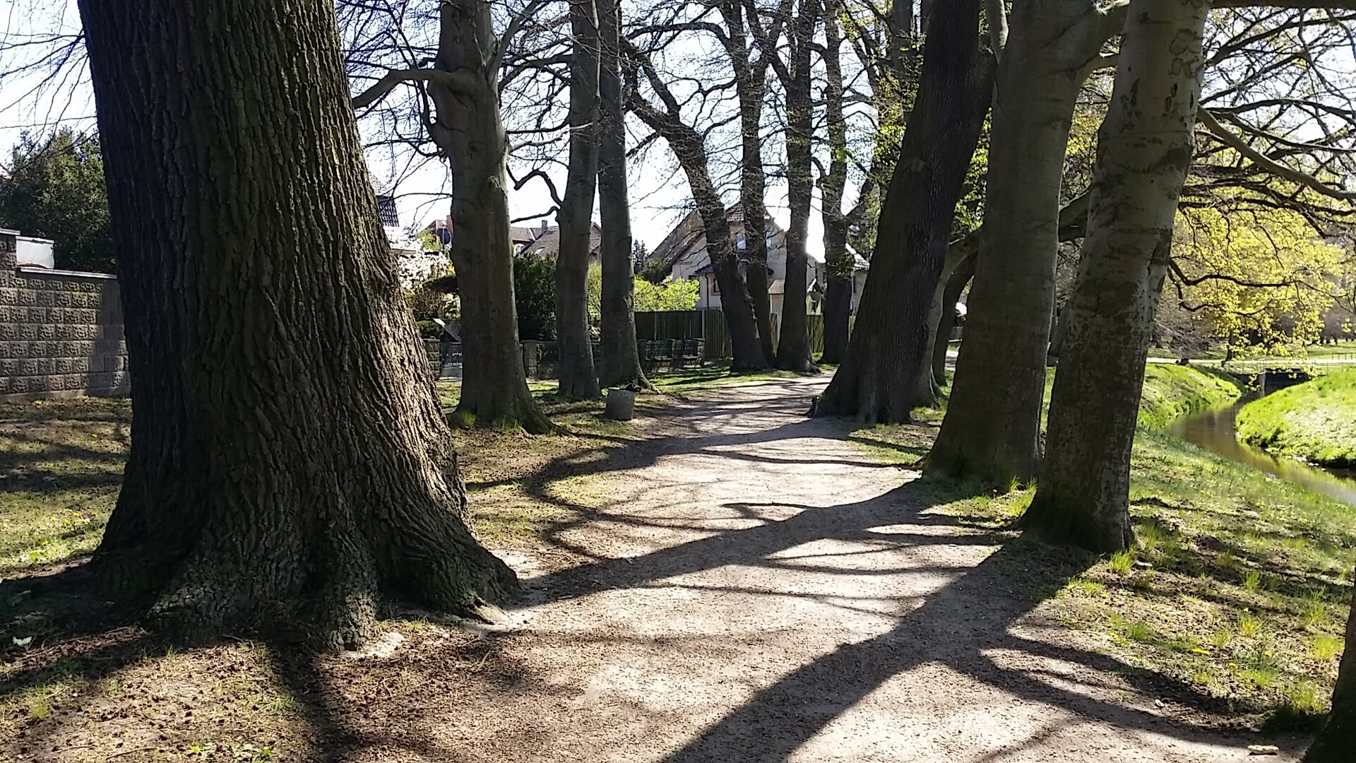 Eichenpromenade im Hagen