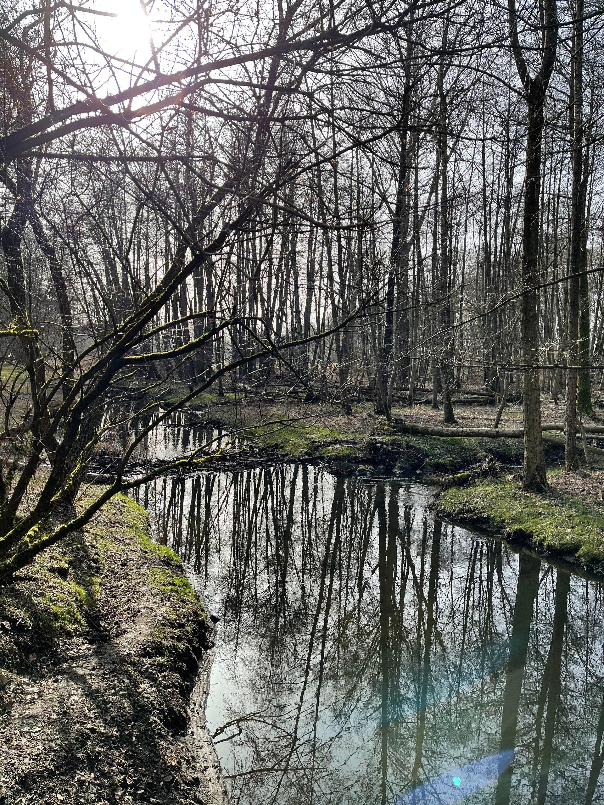 Dömnitz im Frühjahr