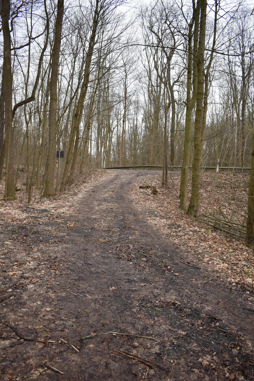 Der Lusthaus-Teichweg mündet hier in der Leisniger Straße