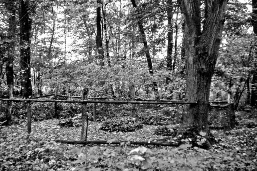 Begräbnisplatz 1950
