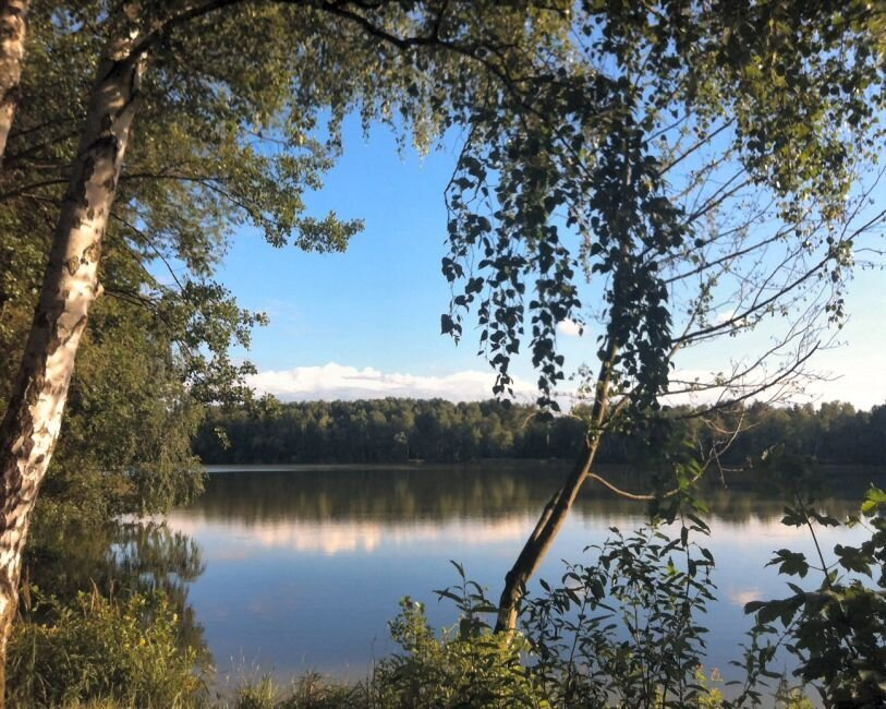Der Falkenhagener See und der Neue See laden zum Verweilen im Landschaftsschutzgebiet ein.
