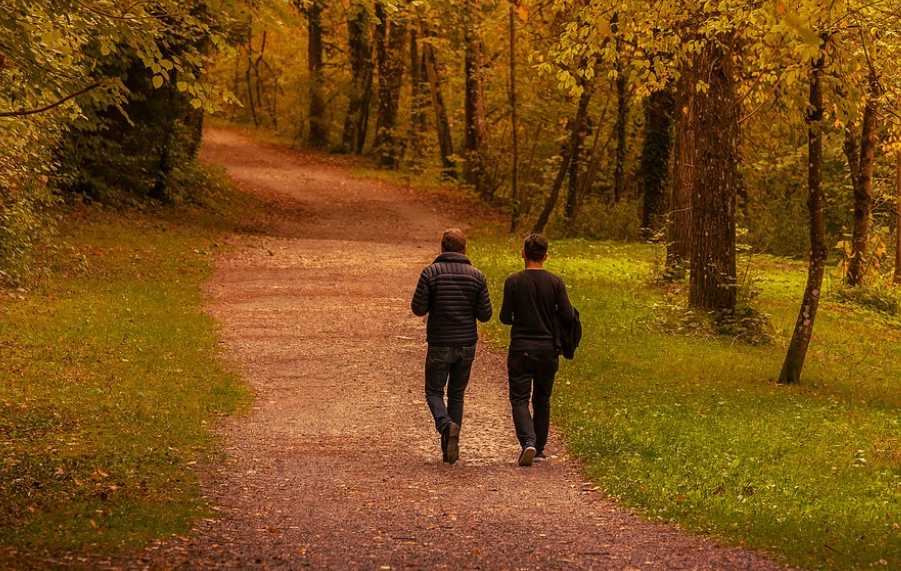Bild zeigt zwei Spaziergänger in der Natur, Foto: pixabay