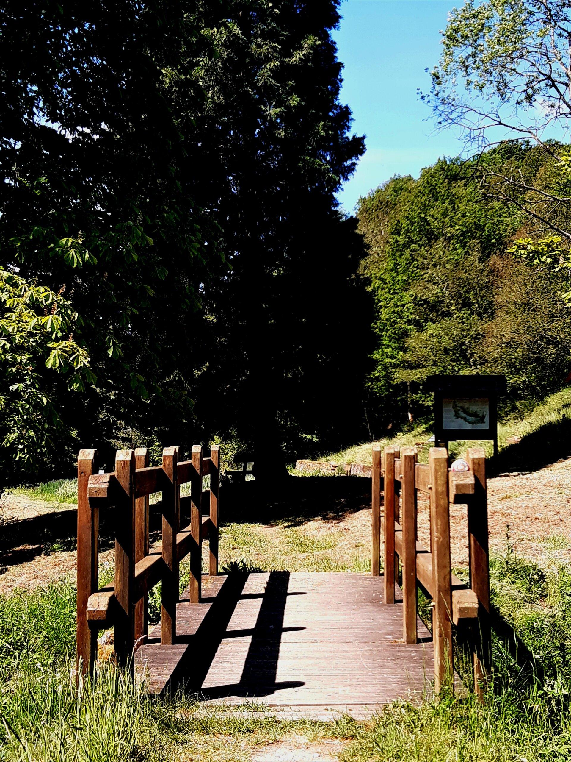 Waldforum Roskerbach Brücke zum Biotop