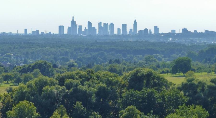 Bild zeigt die Aussicht über Wiesen und Felder von Maintal Richtung Frankfurt am Main; Bild: Stadt Maintal