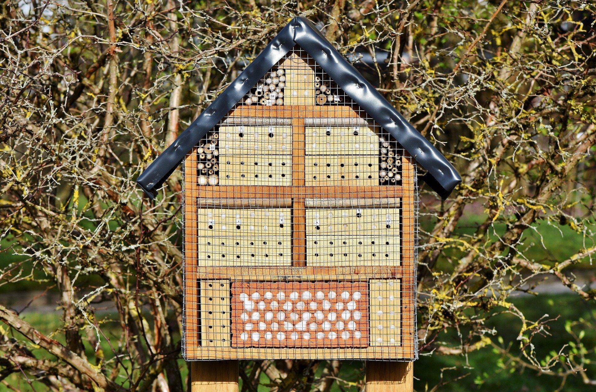 Insektenhotel (Quelle: Pixabay)