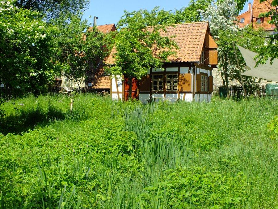 Backhaus im Grünen