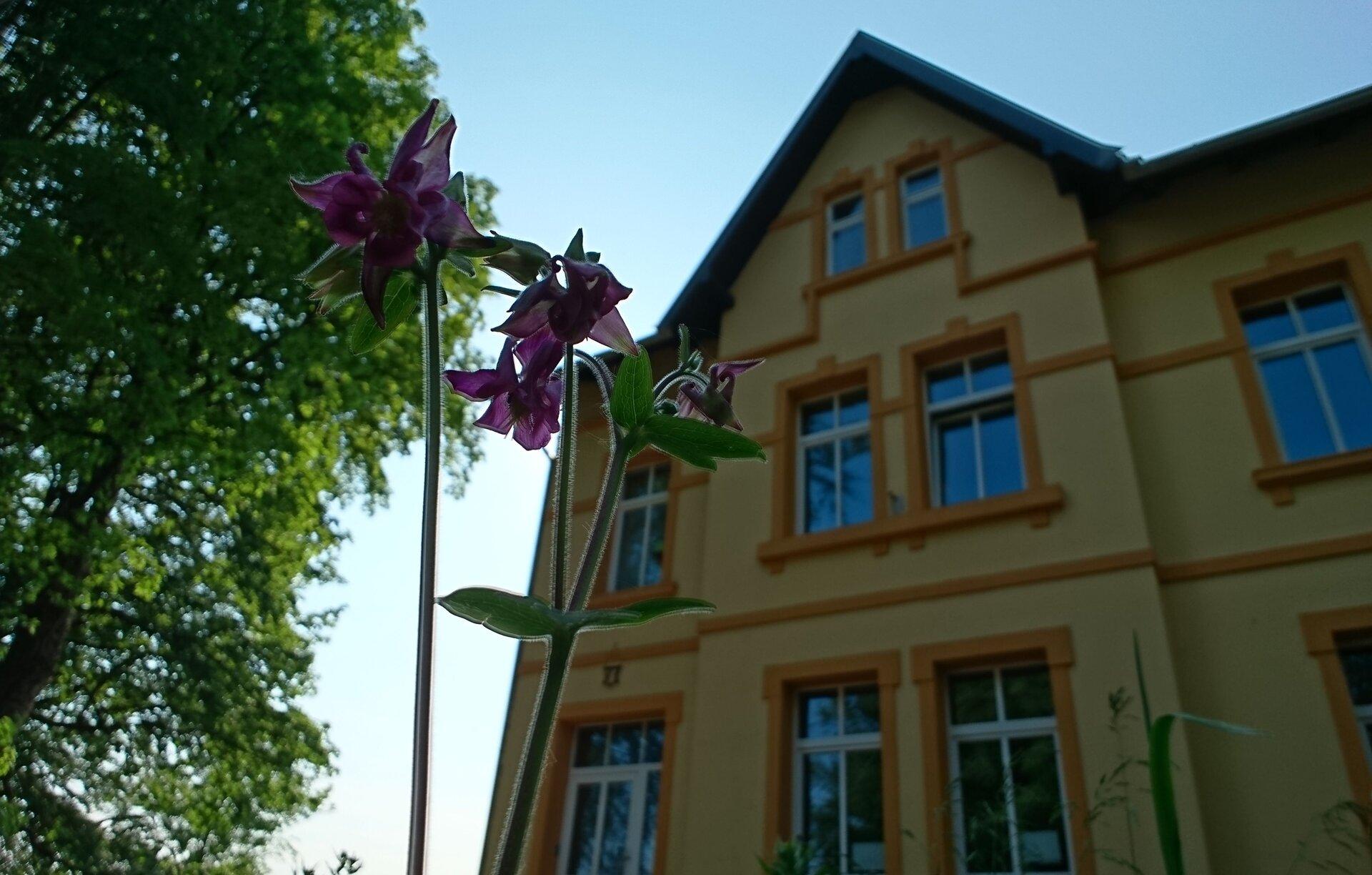 """Ferienwohnung """"Forsthaus"""""""