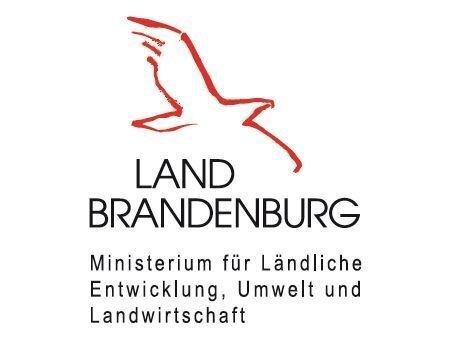 links_logo_minis_landw