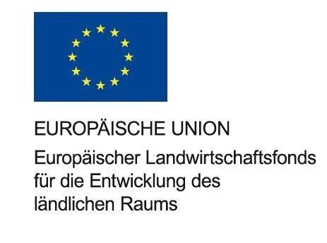 mitte_Logo_EU