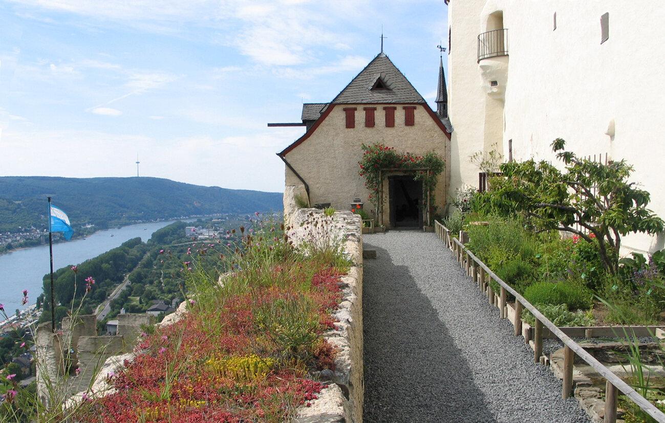 Botanischer Garten des Mittelalters, Marksburg Braubach , © Dt. Burgenvereinigung e.V.
