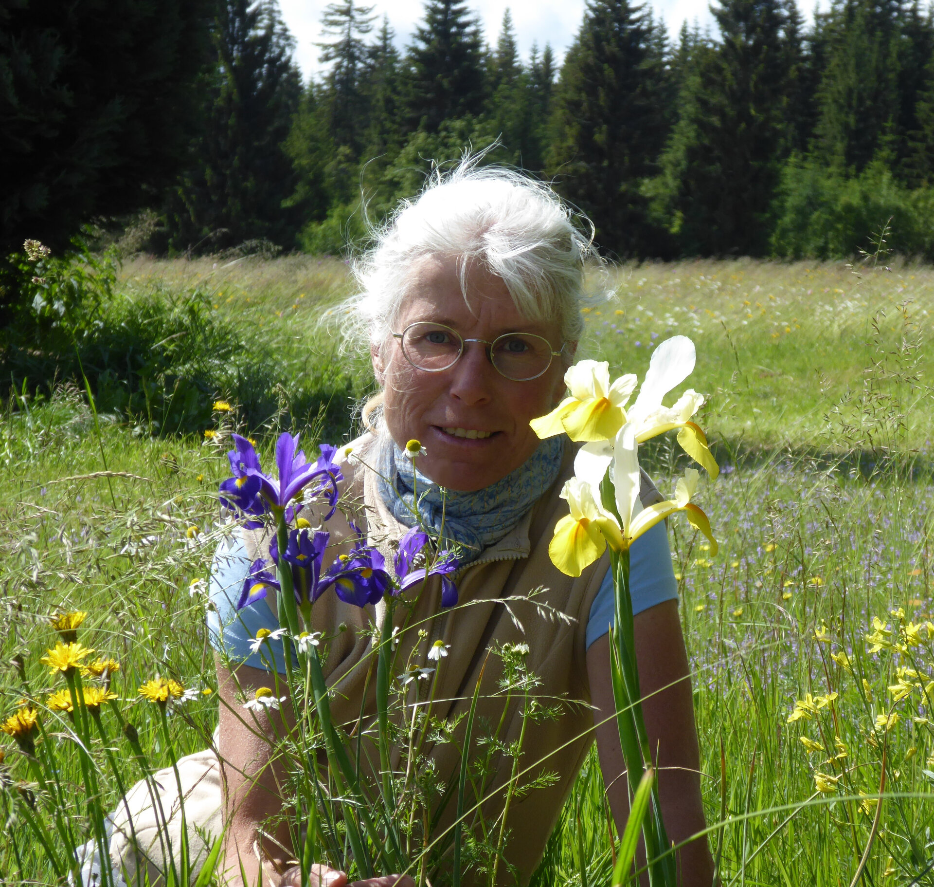Iris Mende