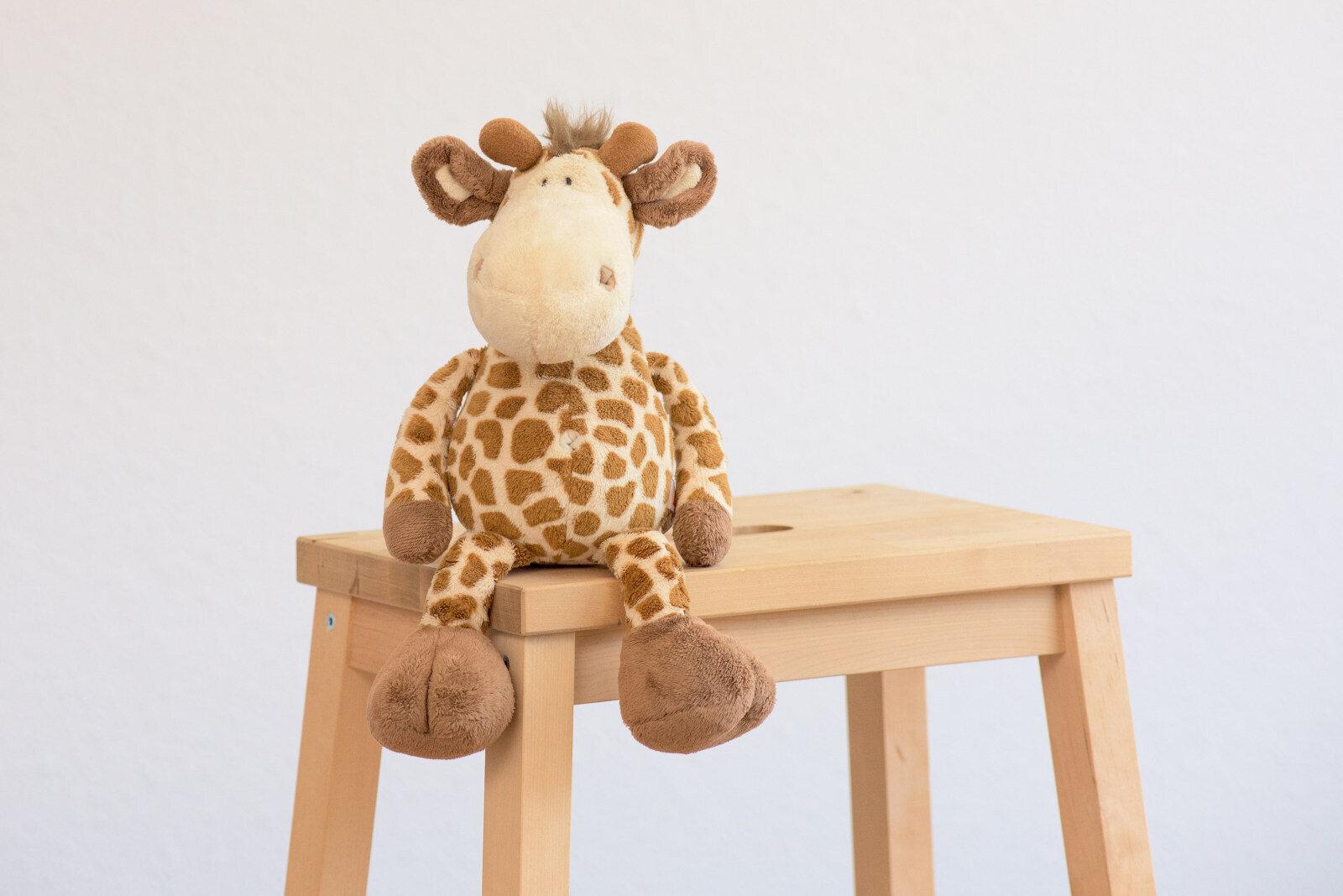 1a - Raffi Giraffe