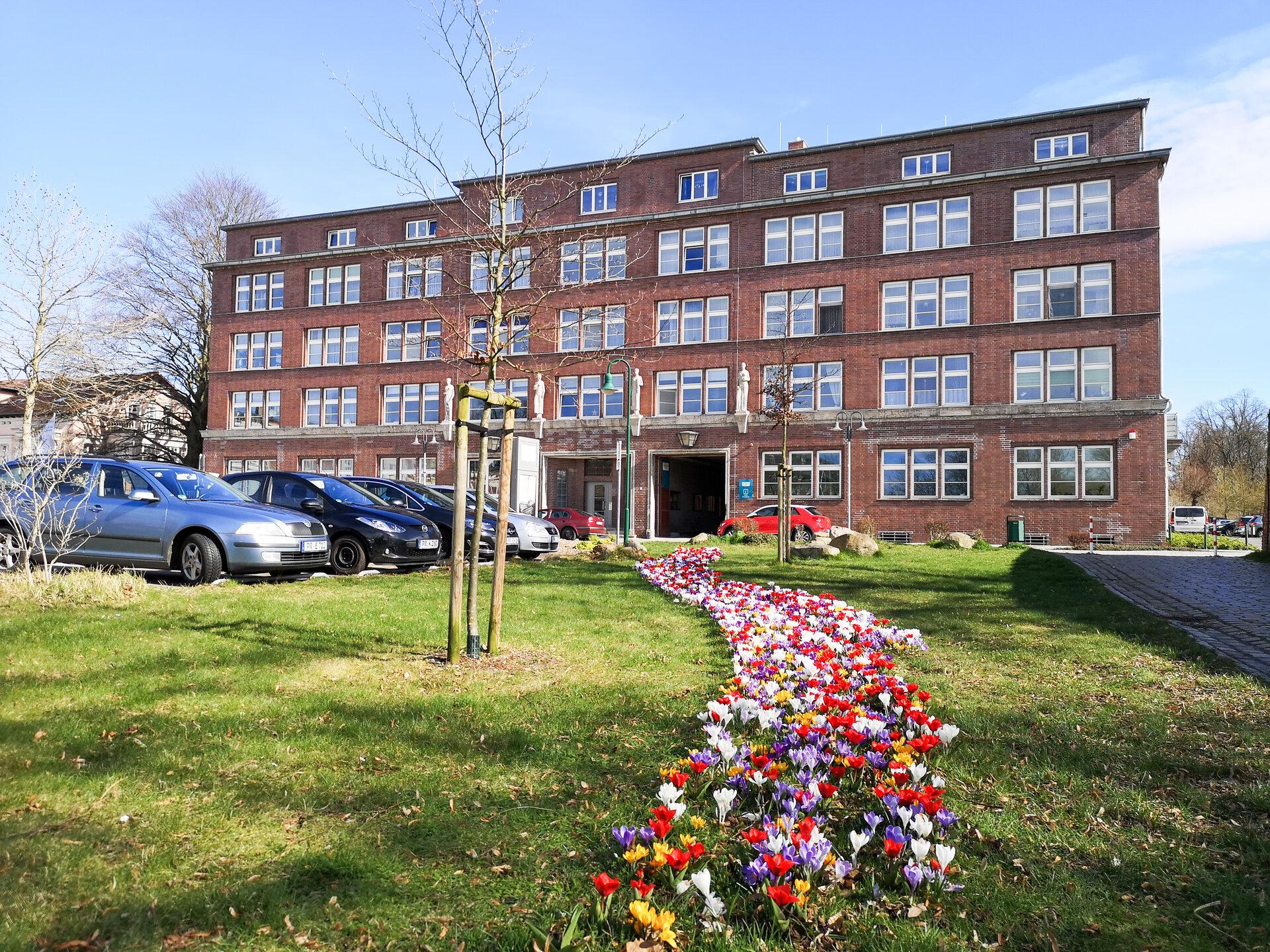 Frühlingsblumen an der Museumsfabrik Pritzwalk