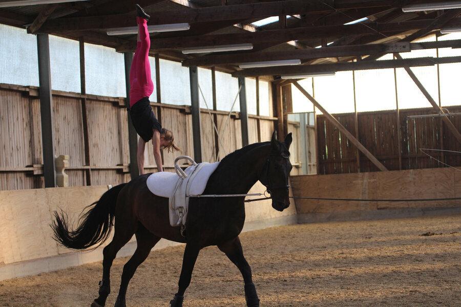 Ausrüstig Pferd