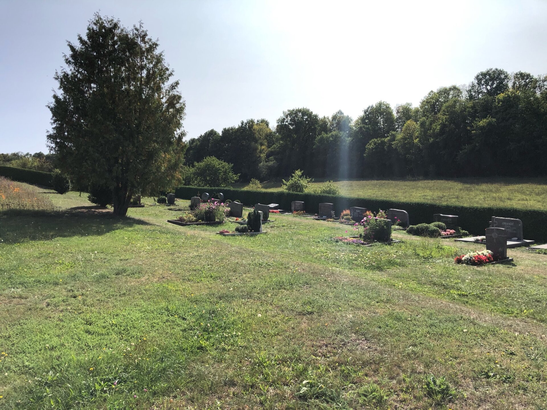 Friedhof Solms