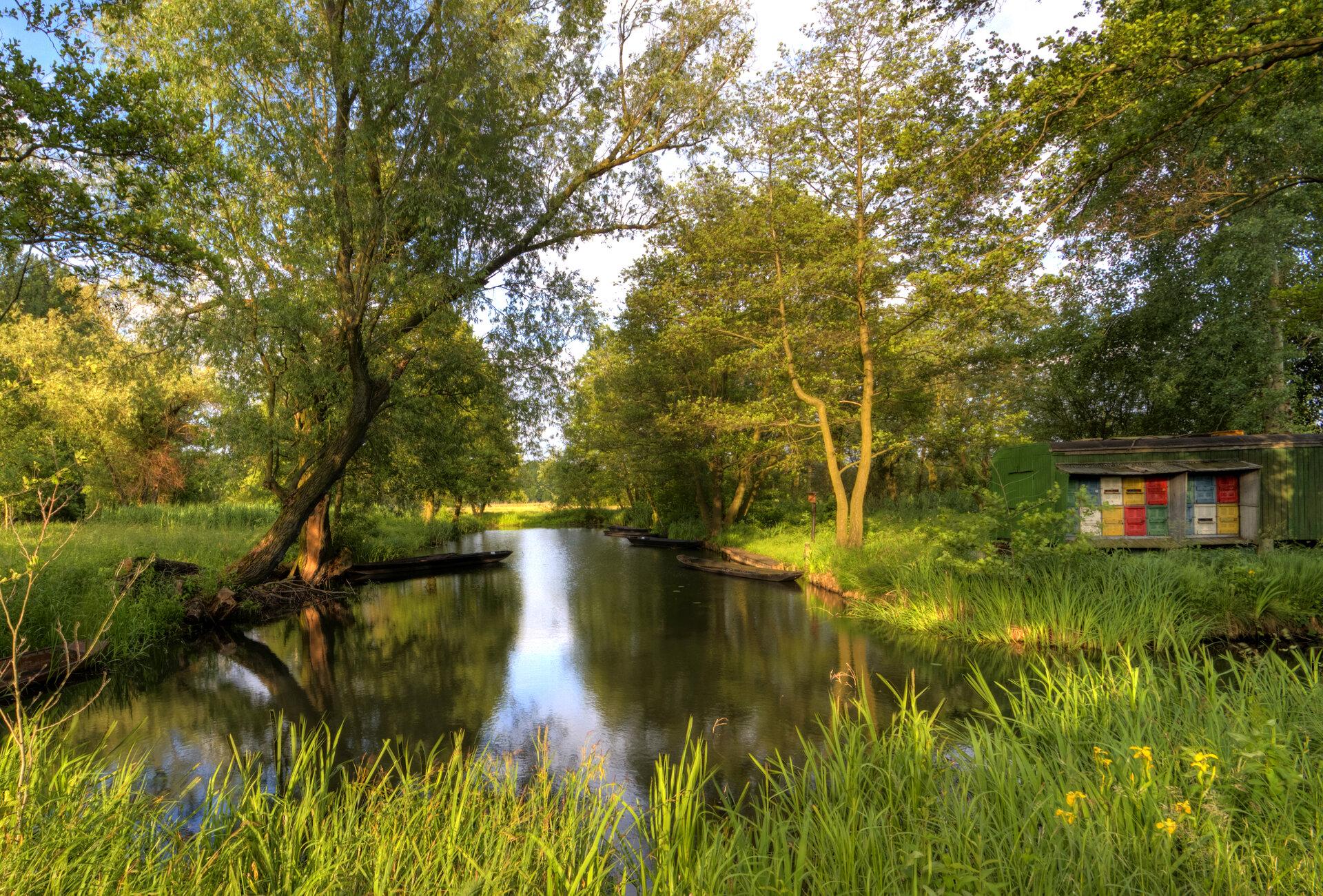 Spreewaldfließ, Foto: Peter Becker