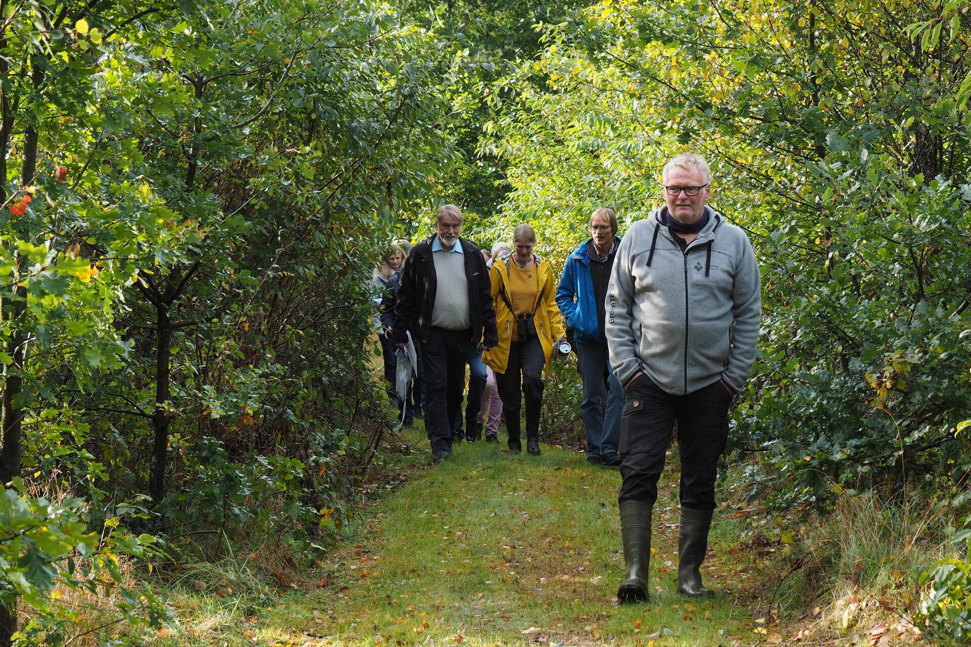 Rundweg durch den Birkenwald mit viel Traubenkirsche