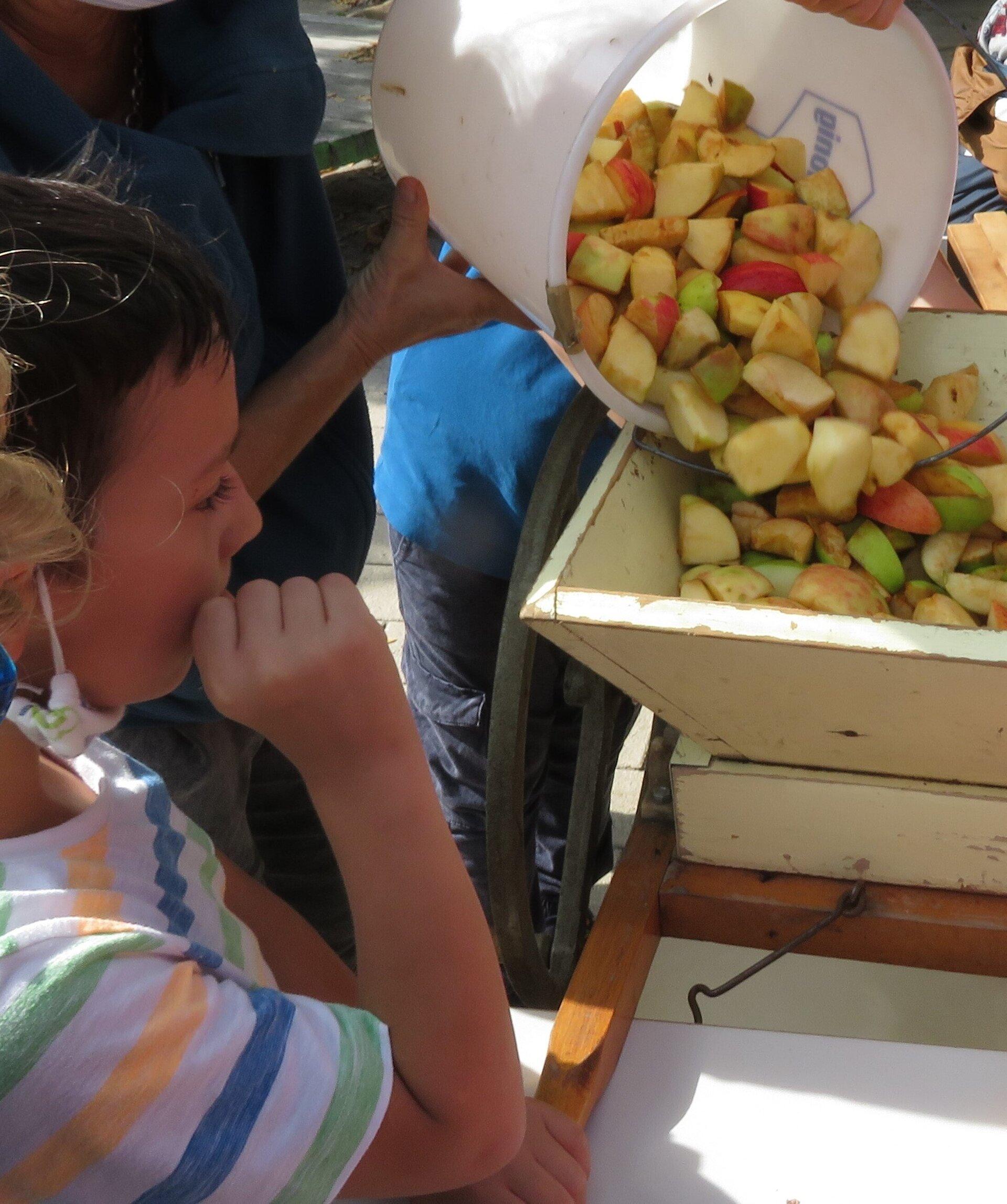 Apfelsaftprojekt 1