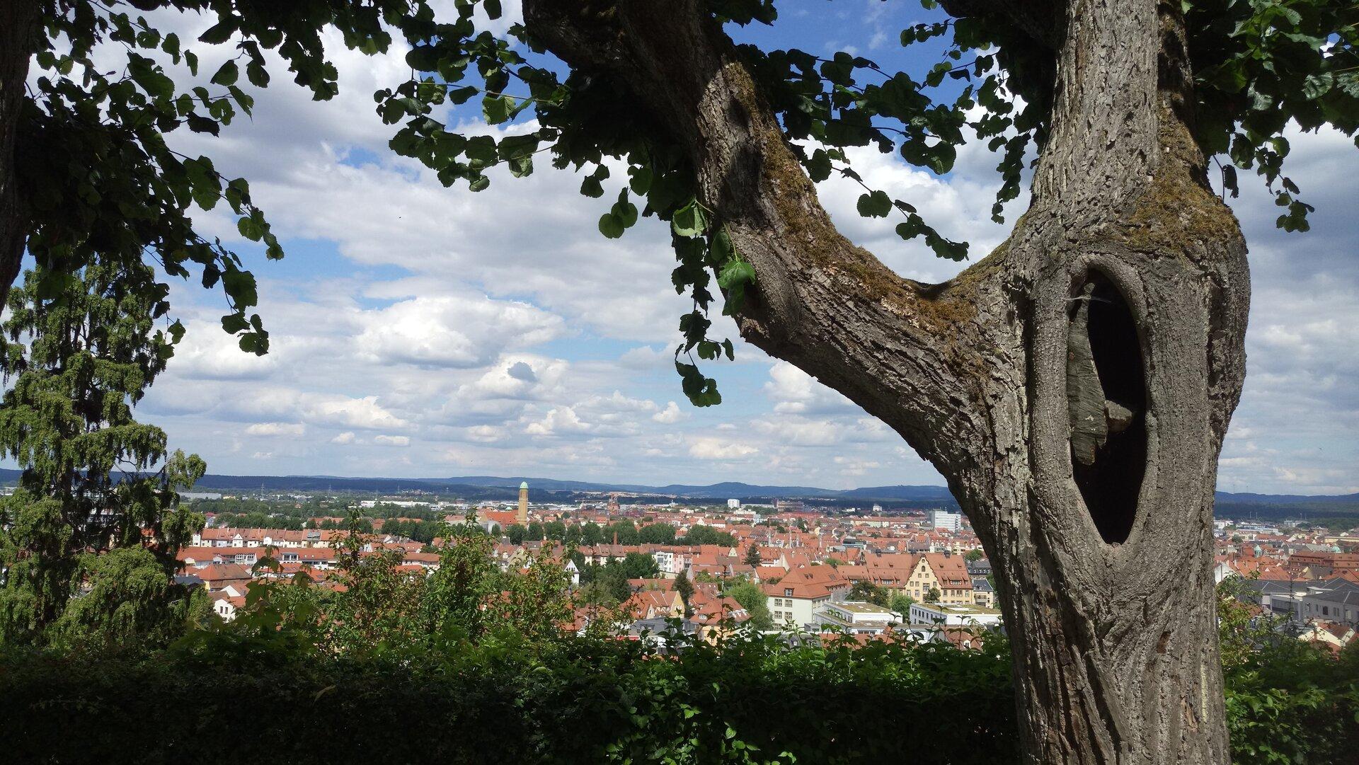 Sicht vom Michelsberg