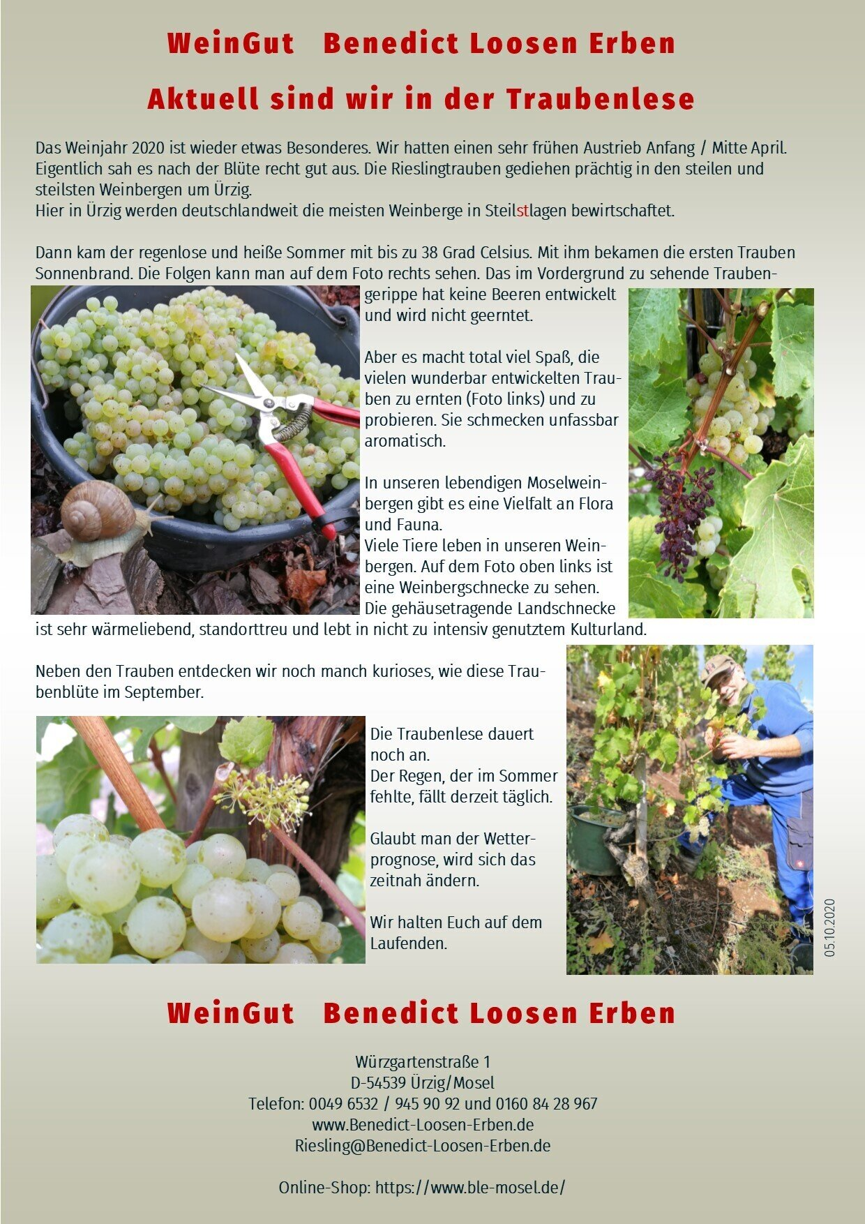 Neues aus dem WeinGut Benedict Loosen Erben