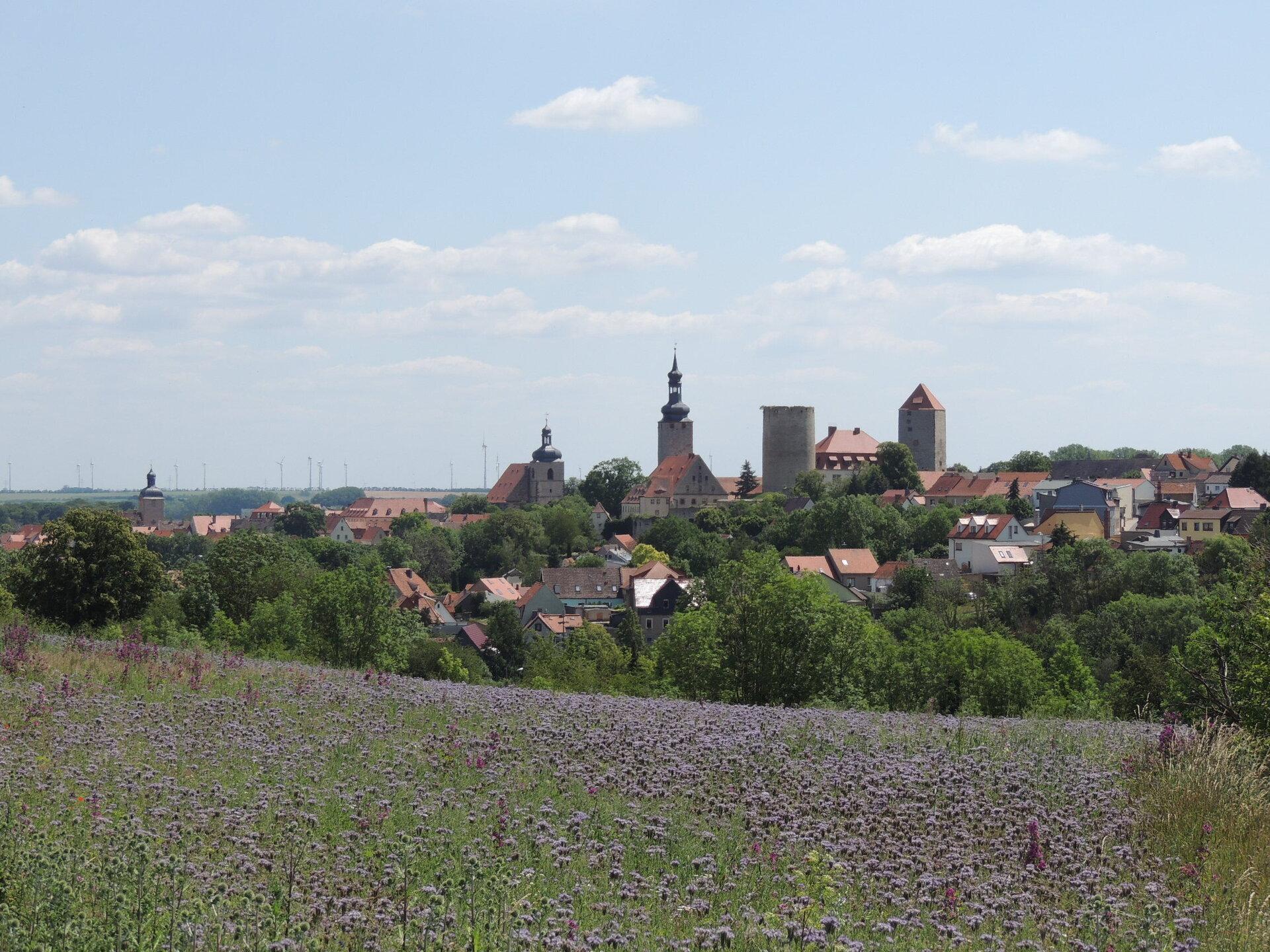 Ansicht der Stadt Querfurt von Westen