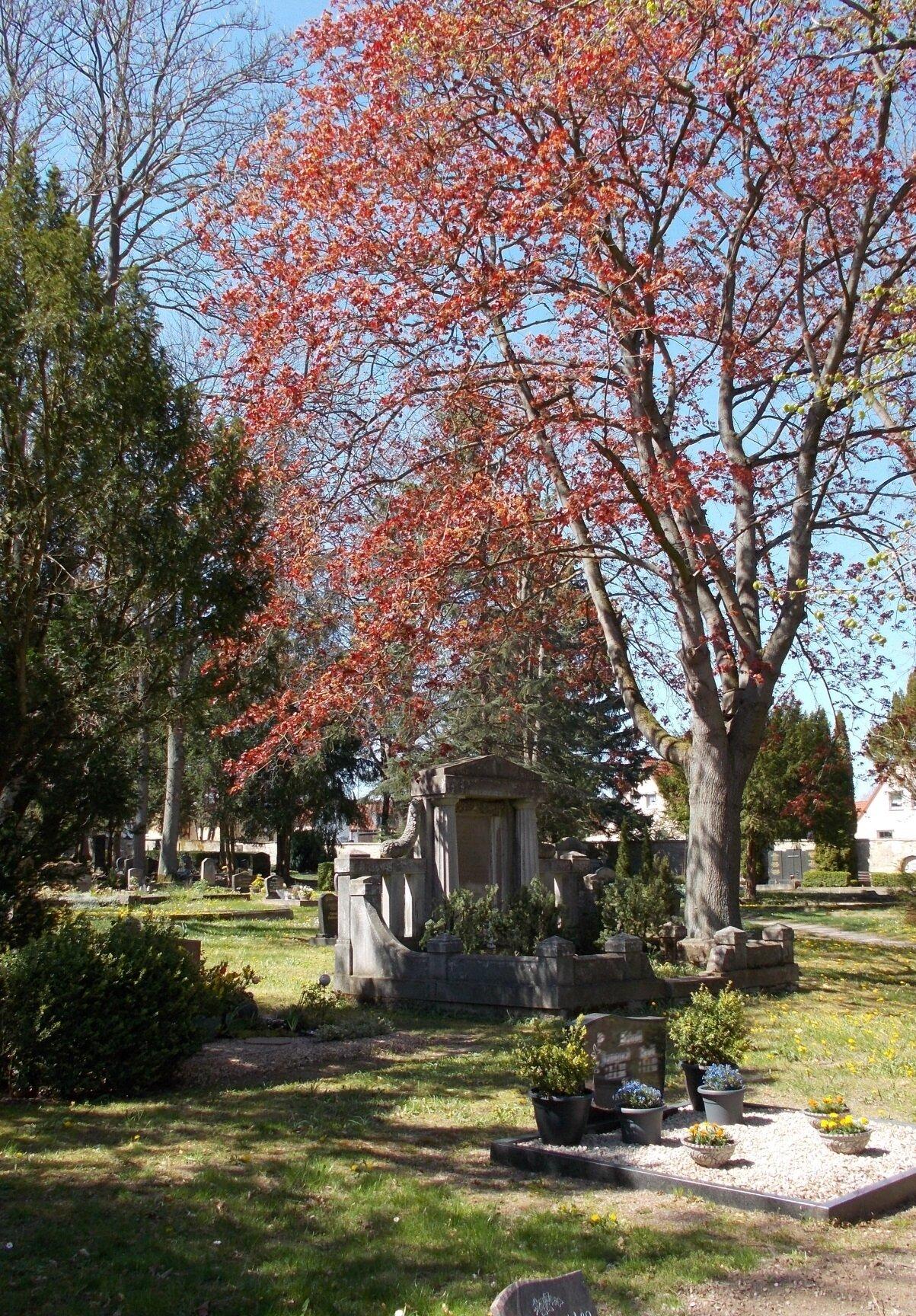 Städtischer Friedhof Querfurt