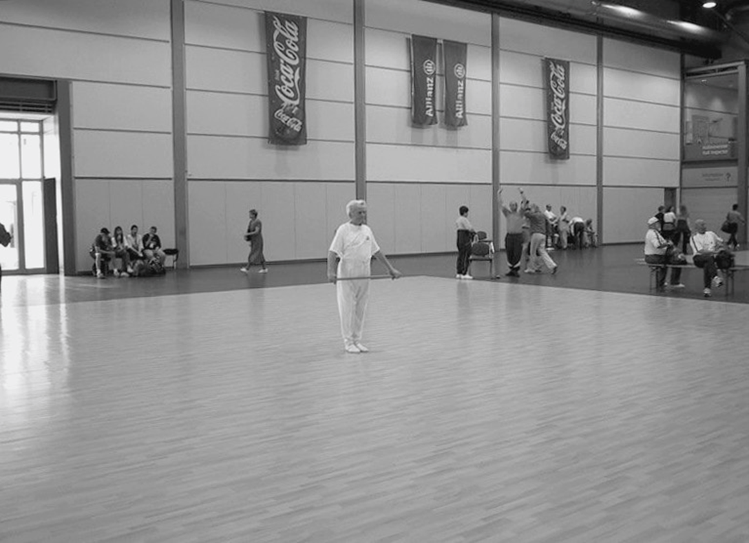 18. - 25. Mai 2002 31. Turnfest Leipzig