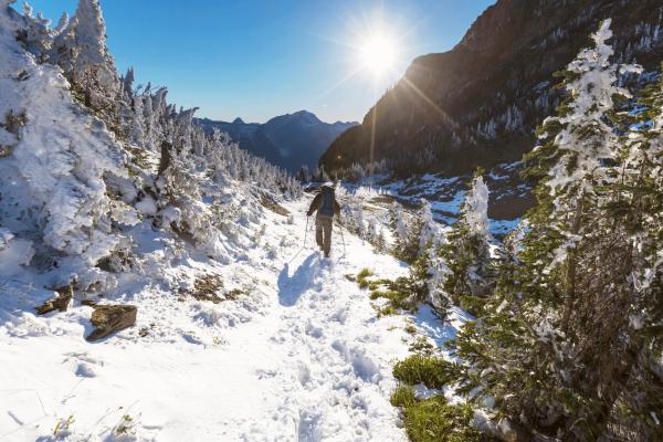 Winterwanderung Bayerischer Wald
