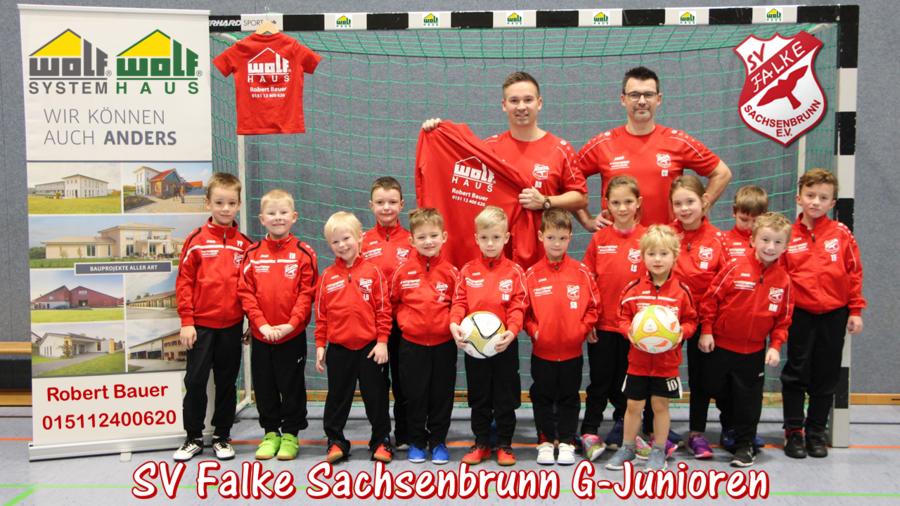 SV Falke Sachsenbrunn - G-Junioren
