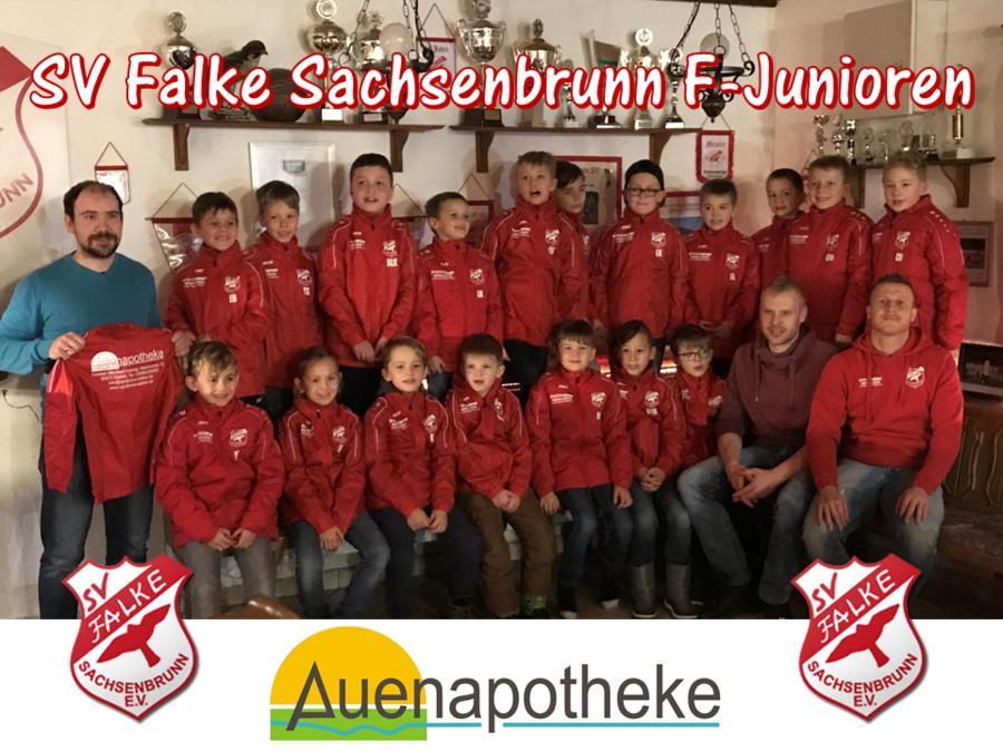 SV Falke Sachsenbrunn - F-Junioren