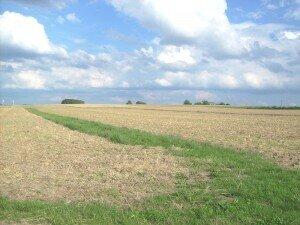 Ansicht in Richtung Beltheim Ost-Ansicht vom Grundstück 3,5,6