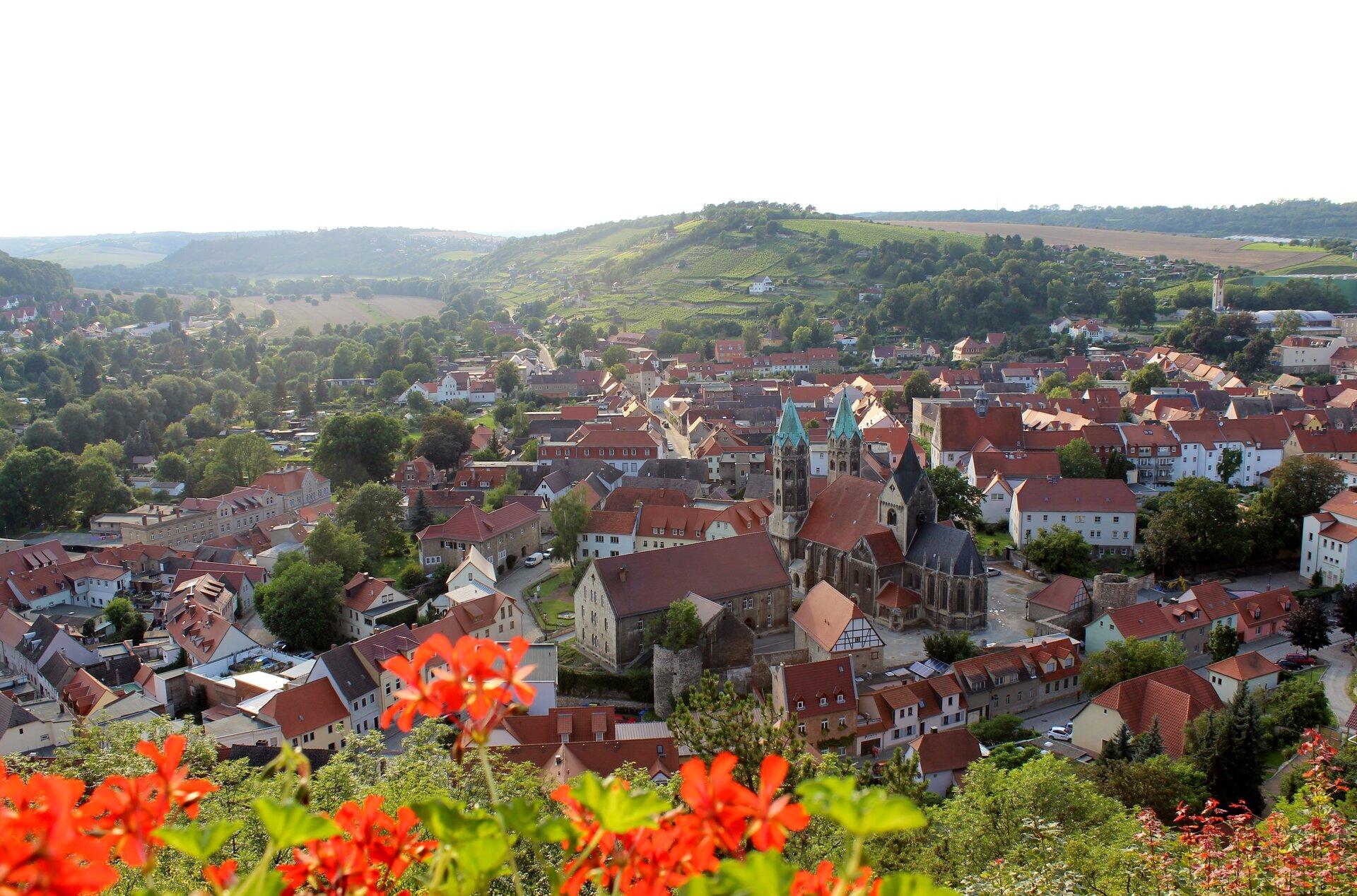 Freyburg (Foto: Weinfreunde Saale-Unstrut e.V.)