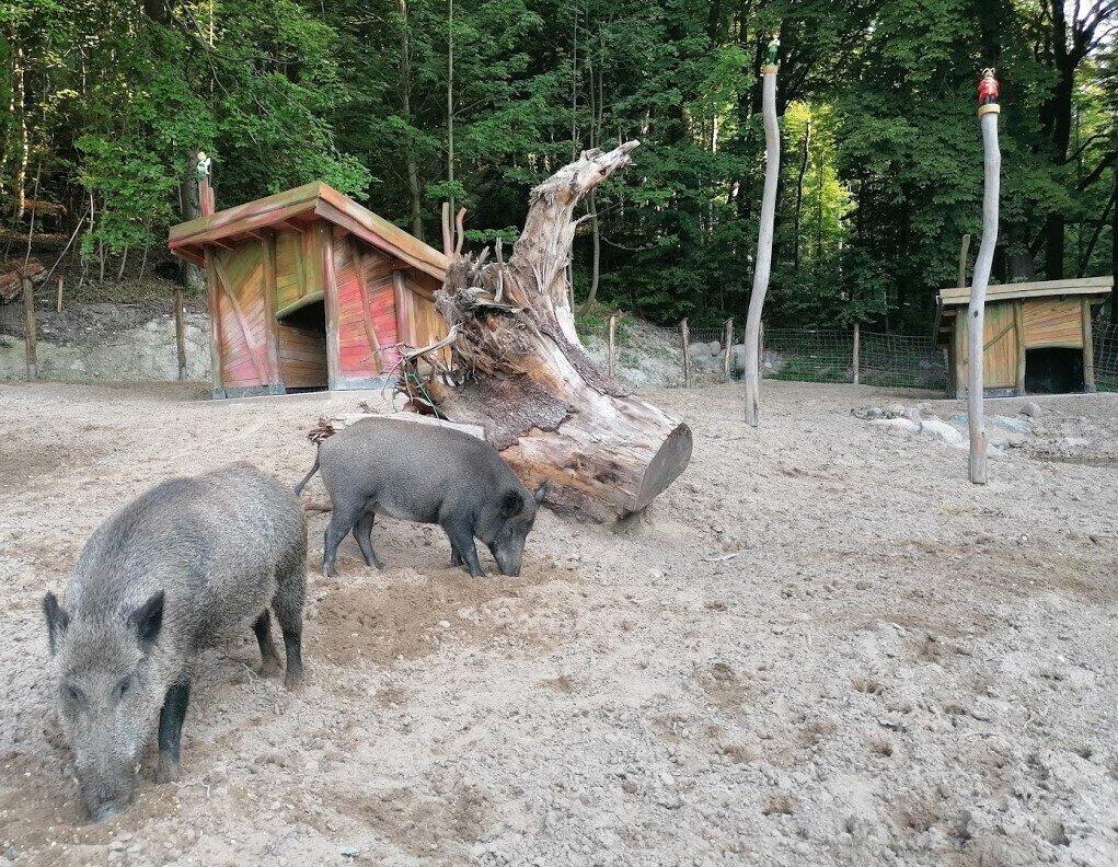 Eberhard und Schweinie