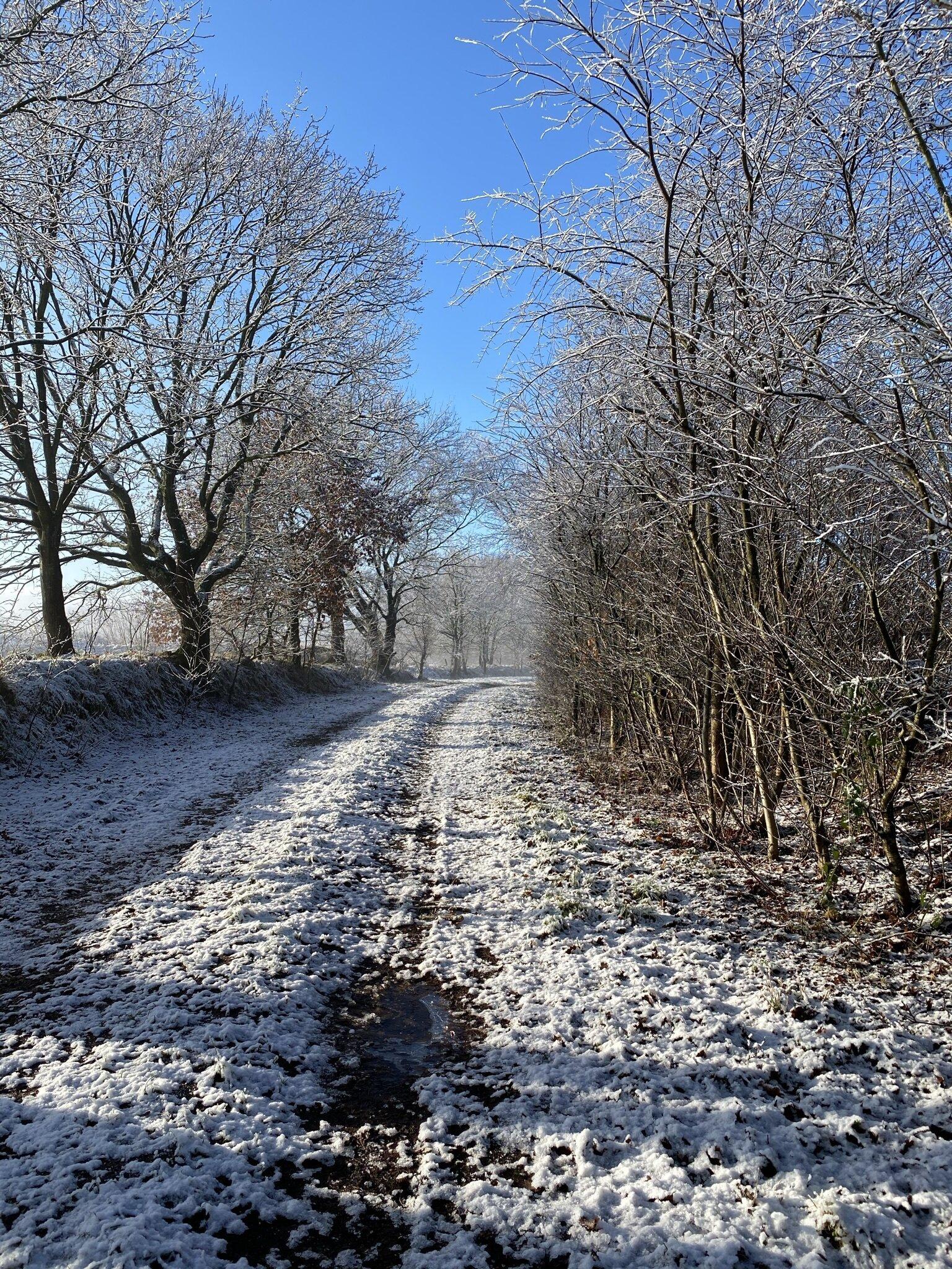 Wiesenweg im Schnee