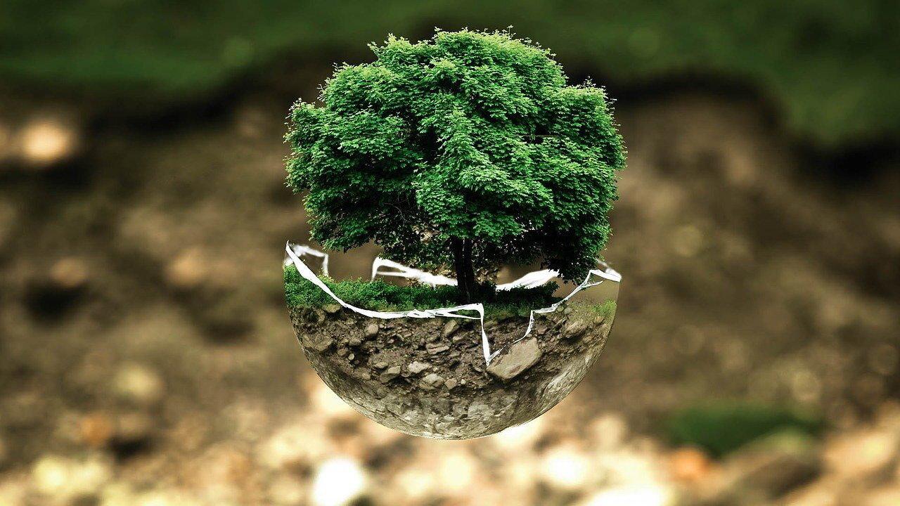 Umwelt entlasten