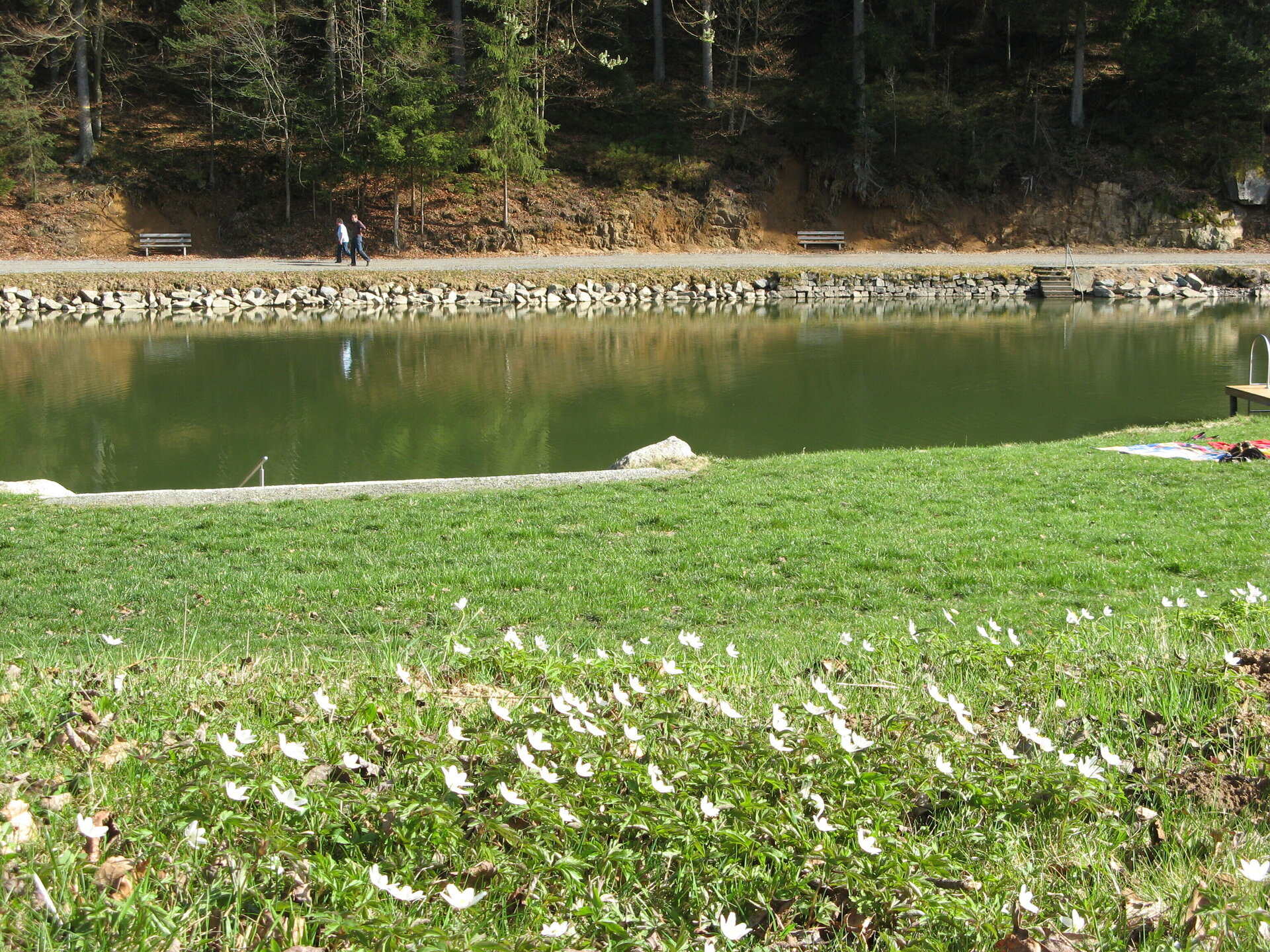 Frühlingserwachen am Badesee