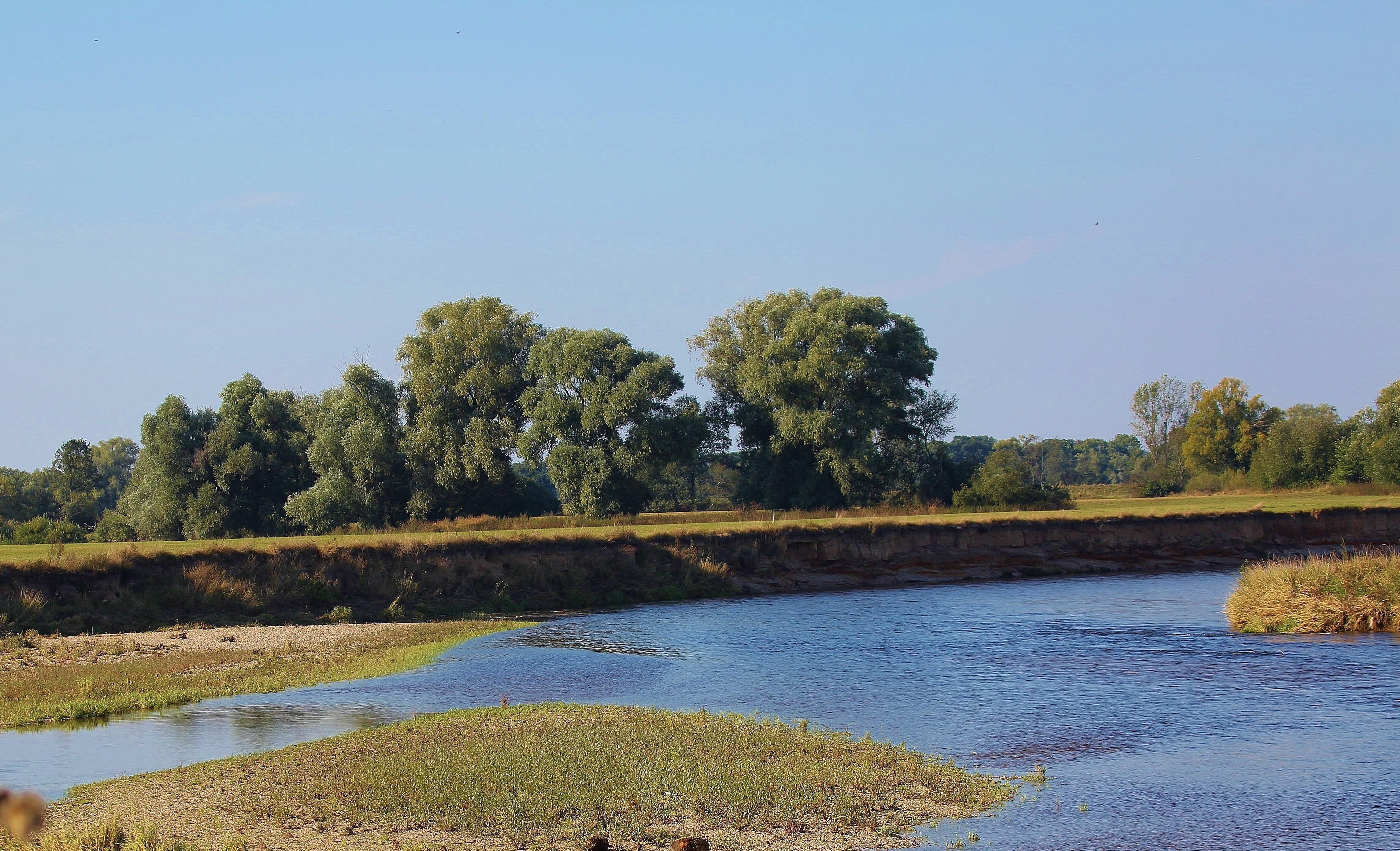 Landschaftsbild Muldenaue 1