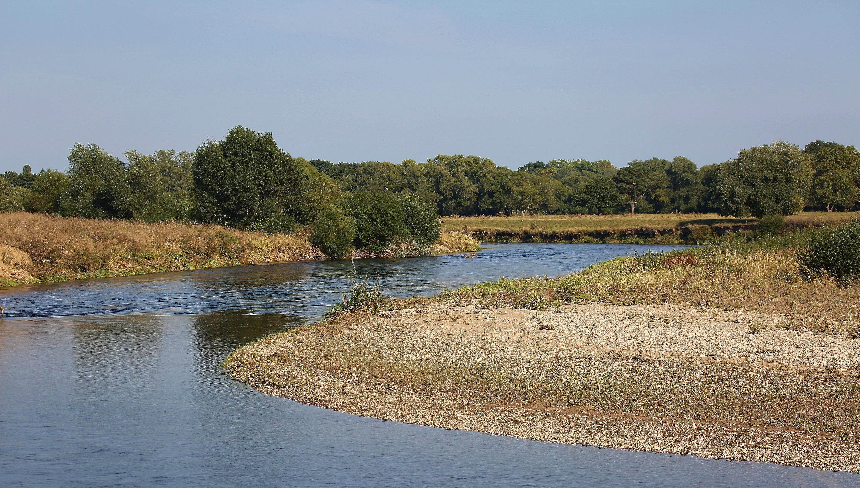 Landschaftsbild Muldenaue 3