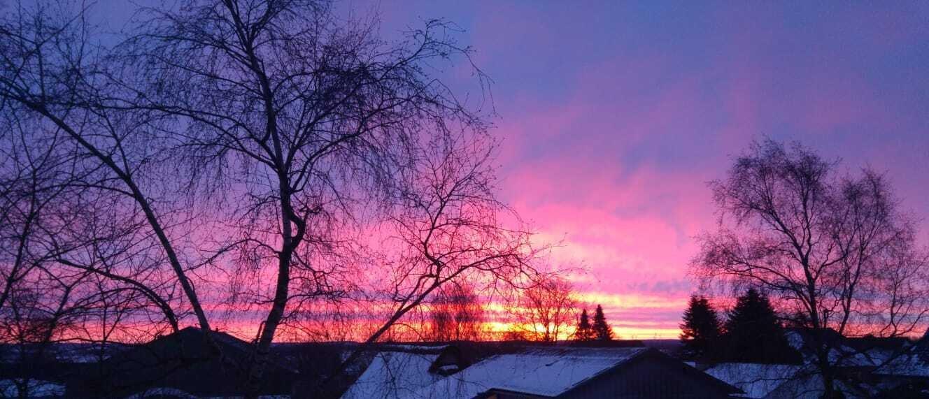 Sonnenaufgang in Süderschmedeby (Febr. 2021)