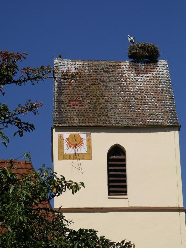 Kirchturm mit Störchen
