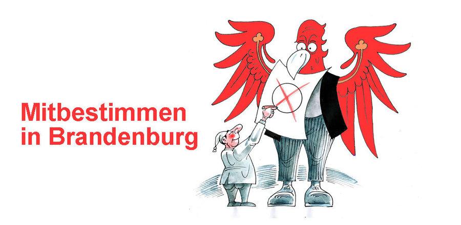 mitbestimmen_adler_cartoon_reiner_schwalme_0