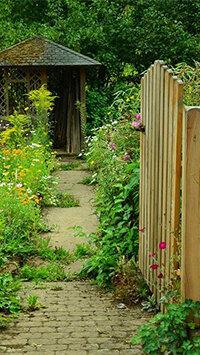 pixabay_garden-910946